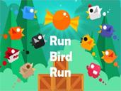 Run Bird Run preview
